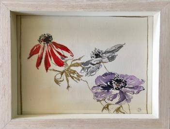 Anémones fanées 2, crayon, aquarelle